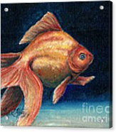 Fancy Goldfish Acrylic Print by Linda L Martin