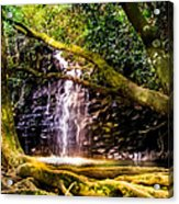Fantasy Forest Acrylic Print by Karen Wiles
