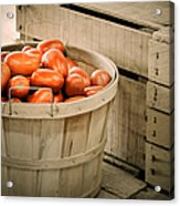 Farmers Market Plum Tomatoes Acrylic Print by Julie Palencia