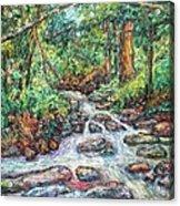 Fast Water Wildwood Park Acrylic Print by Kendall Kessler