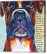 Fawn Boxer Love Acrylic Print by Stephanie Gerace
