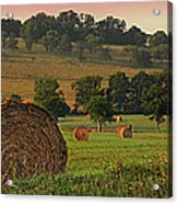 Field Of Hay Acrylic Print by Steven  Michael
