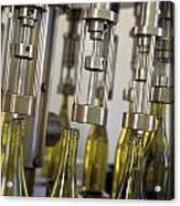 Filling Wine Bottles Acrylic Print by Kevin Miller