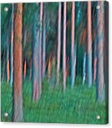 Finland Forest Acrylic Print by Heiko Koehrer-Wagner