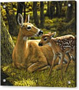 First Spring - Variation Acrylic Print by Crista Forest
