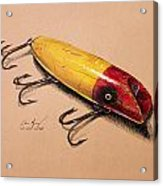 Fishing Lure Acrylic Print by Aaron Spong