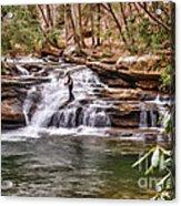 Fishing Mill Creek Falls In West Virginia Acrylic Print by Dan Friend