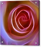 Floral Light Acrylic Print by Ann Croon