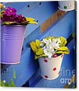 Flower Baskets Acrylic Print by Carlos Caetano