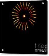 Flower Fireworks Acrylic Print by Robert Bales