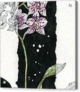 Flower Orchid 04 Elena Yakubovich Acrylic Print by Elena Yakubovich