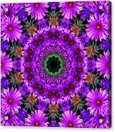 Flower Power Acrylic Print by Kristie  Bonnewell