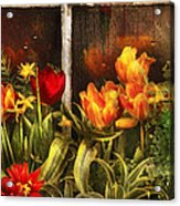 Flower - Tulip - Tulips In A Window Acrylic Print by Mike Savad