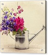 Flowers In Watering Can Acrylic Print by Edward Fielding