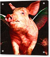 Flying Pigs V2 Acrylic Print by Wingsdomain Art and Photography