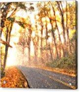 Foggy Fall Wonderland - Blue Ridge Parkway II Acrylic Print by Dan Carmichael
