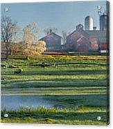 Foggy Farm Morning Acrylic Print by Bill Wakeley