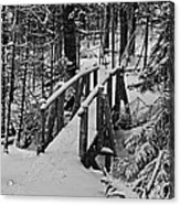 Foot Bridge In Winter Acrylic Print by David Rucker