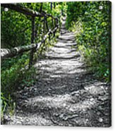Forest Path Acrylic Print by Dobromir Dobrinov