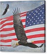 Freedom Flight Acrylic Print by Angie Vogel