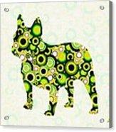 French Bulldog - Animal Art Acrylic Print by Anastasiya Malakhova