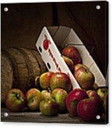 Fresh From The Orchard I Acrylic Print by Tom Mc Nemar