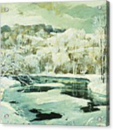 Frosted Trees Acrylic Print by Jonas Lie