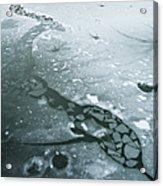 Frozen Pond Acrylic Print by Gary Eason