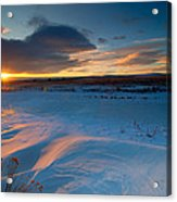 Ft Collins Snow Sparkles Acrylic Print by Preston Broadfoot