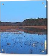 Full Moon At Great Meadows National Wildlife Refuge Acrylic Print by John Burk