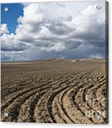 Furrows Before The Storm Acrylic Print by Mike  Dawson