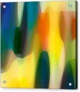 Fury Rain 4 Acrylic Print by Amy Vangsgard