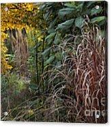 Garden Room With Golden Portal Acrylic Print by Saxon Holt