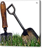 Gardening Tools Acrylic Print by Olivier Le Queinec