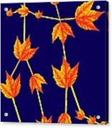 Gemini Constellation Composed By Maple Leaves Acrylic Print by Paul Ge