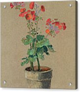 Geraniums In A Pot  Acrylic Print by Odilon Redon