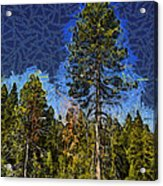 Giant Abstract Tree Acrylic Print by Barbara Snyder