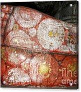 Giant Buddha Feet Acrylic Print by Jane Rix