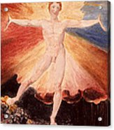 Glad Day Or The Dance Of Albion Acrylic Print by William Blake
