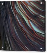 Glass Veins Acrylic Print by Kimberly Lyon