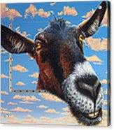 Goat A La Magritte Acrylic Print by Jurek Zamoyski