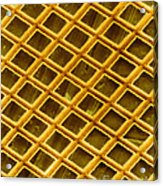Gold Electron Micrograph Grid Acrylic Print by David M. Phillips
