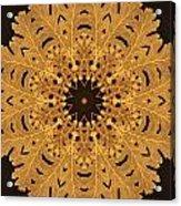Gold Oak Leaves Acrylic Print by Dawn LaGrave