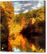 Golden Autumn Acrylic Print by Joann Vitali