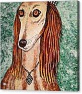 Golden Dog Acrylic Print by Jasna Gopic