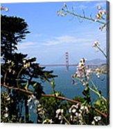 Golden Gate Bridge And Wildflowers Acrylic Print by Carol Groenen