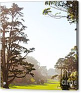 Golden Gate Park San Francisco Acrylic Print by Artist and Photographer Laura Wrede