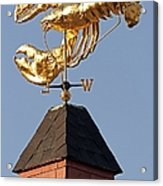 Golden Lobster Weathervane Acrylic Print by Juergen Roth
