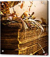 Golden Pages Falling Flowers Acrylic Print by Bob Orsillo