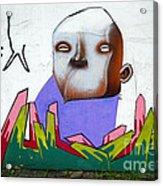 Graffiti Art Curitiba Brazil 17 Acrylic Print by Bob Christopher